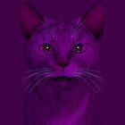 purple cat by Mythos57