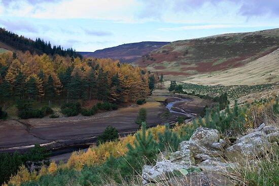 Autumn Landscape #2 by chris2766