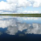 Clouds Reflected on Pinkney Lake ,Sask.Canada by MaeBelle