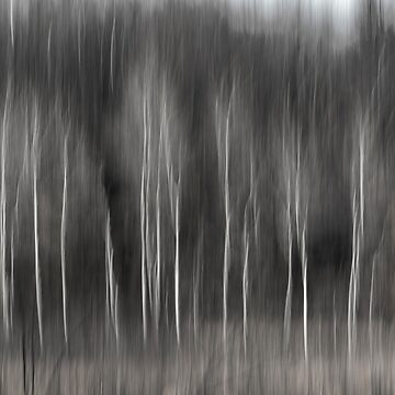 Abstract Of Birch At The Edge Of The Marsh 2018-2 by Thomasyoung