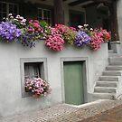 Rapperswill, Switzerland by jaeepathak