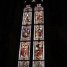 Stained glass window, Cloisters, NY by jaeepathak