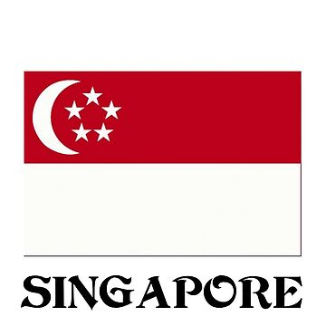Flag of Singapore by virginia50