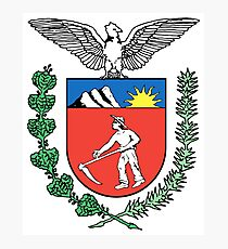 Coat of arms of Paraná Photographic Print