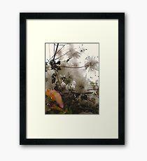 Furry Flora Framed Print