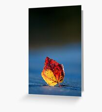 It's Fall in the Details, Take 2 Greeting Card