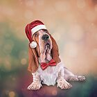 Drawing funny dog. Basset Hound in red hat of Santa Claus  by bonidog