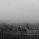 Misty Morn by Bruce Haney