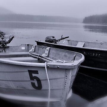 Fish lake and boats by coxon