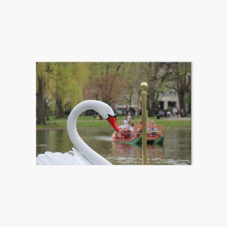 Boston Public Garden Swan Boats Art Board Print
