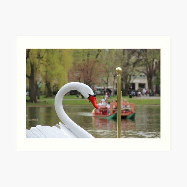 Boston Public Garden Swan Boats Art Print