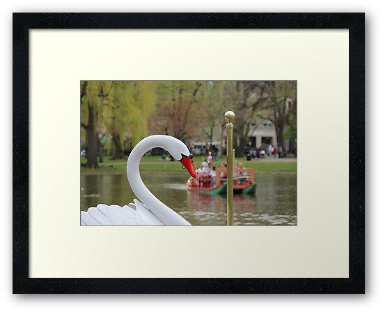 Boston Public Garden Swan Boats by Michelle Callahan