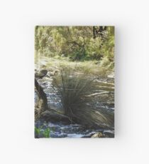 Beating the white ants Hardcover Journal