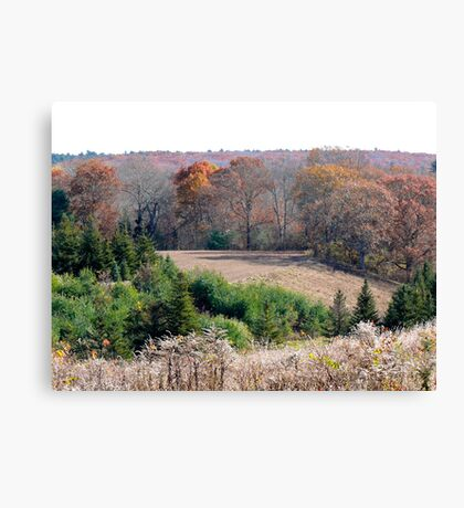 """Tree Farm On N Road"" - Autumns End Series © 2009 Canvas Print"