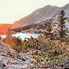 Sunrise in Big Pine by Rosalee Lustig
