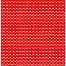 Polka Dots  by RMorra