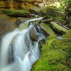 Devil's Cauldron Gorge, Tasmania by Kevin McGennan