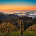 Sunrise in Styrian Tuscany by Delfino