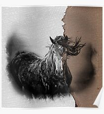 Torn Drywall Texture - Pencil Effect Horse Poster