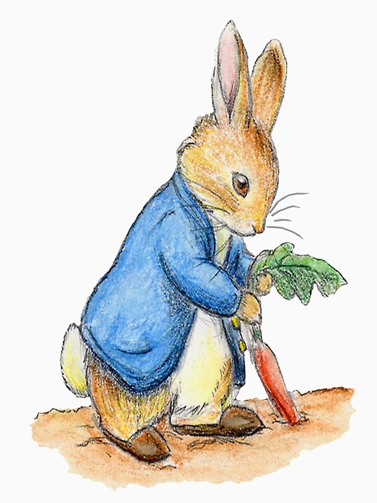 Nursery Characters, Peter Rabbit, Beatrix Potter. by TOMSREDBUBBLE