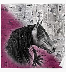 Water Colour Paint Newspaper Texture - Horse Poster