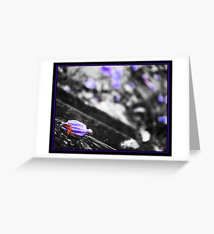 Purple after-tones Greeting Card