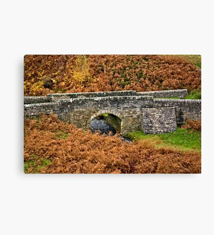 Road Bridge. Canvas Print
