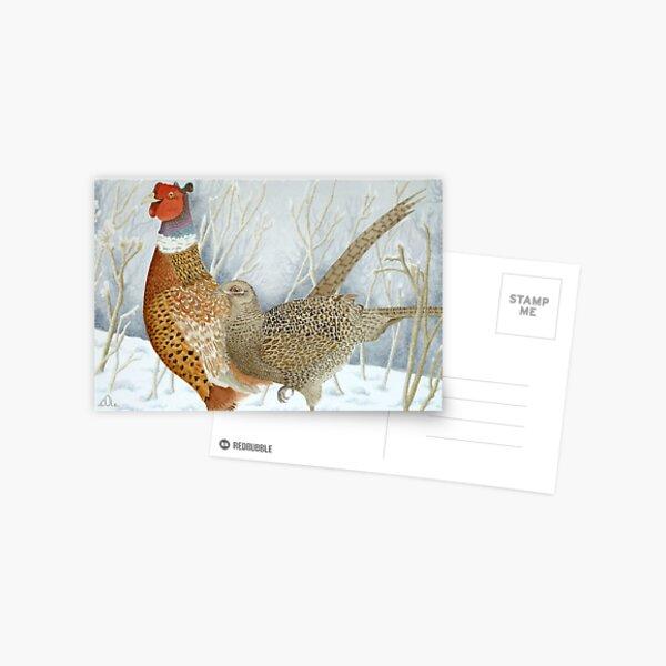 Pheasants in the snow Postcard