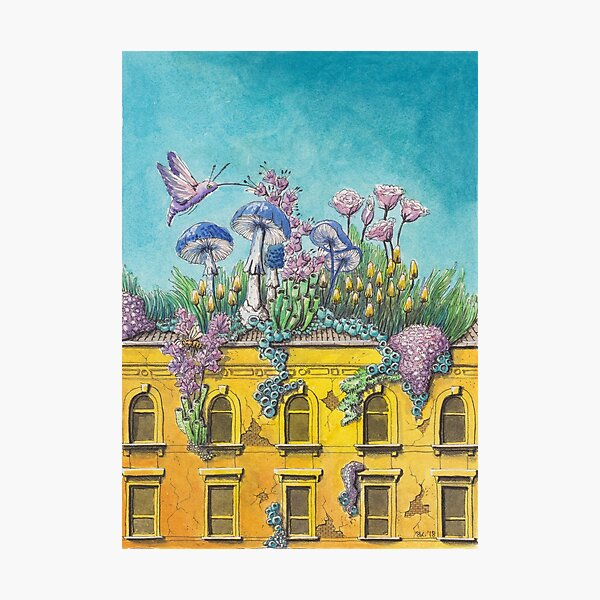 Yellow Building in Pilsen with Nature Growing on Top Photographic Print