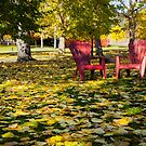 RED CHAIRS IN AUTUMN  by Theresa Tahara