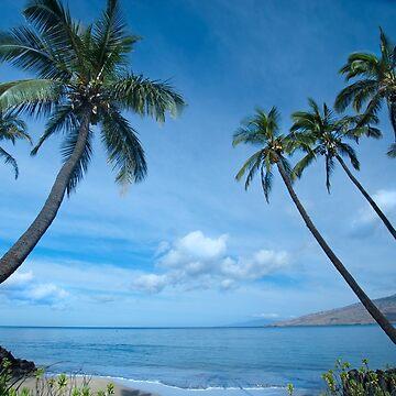 Kihei Morning, Maui by srwdesign