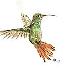 Hummingbird by AKA-art
