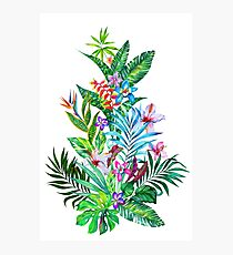 Tropical Fest Photographic Print