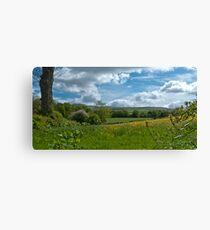 Meadow View to Ingleborough Canvas Print