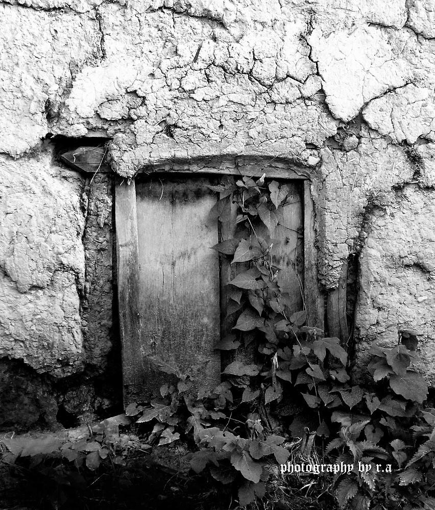 paradise door by farshid