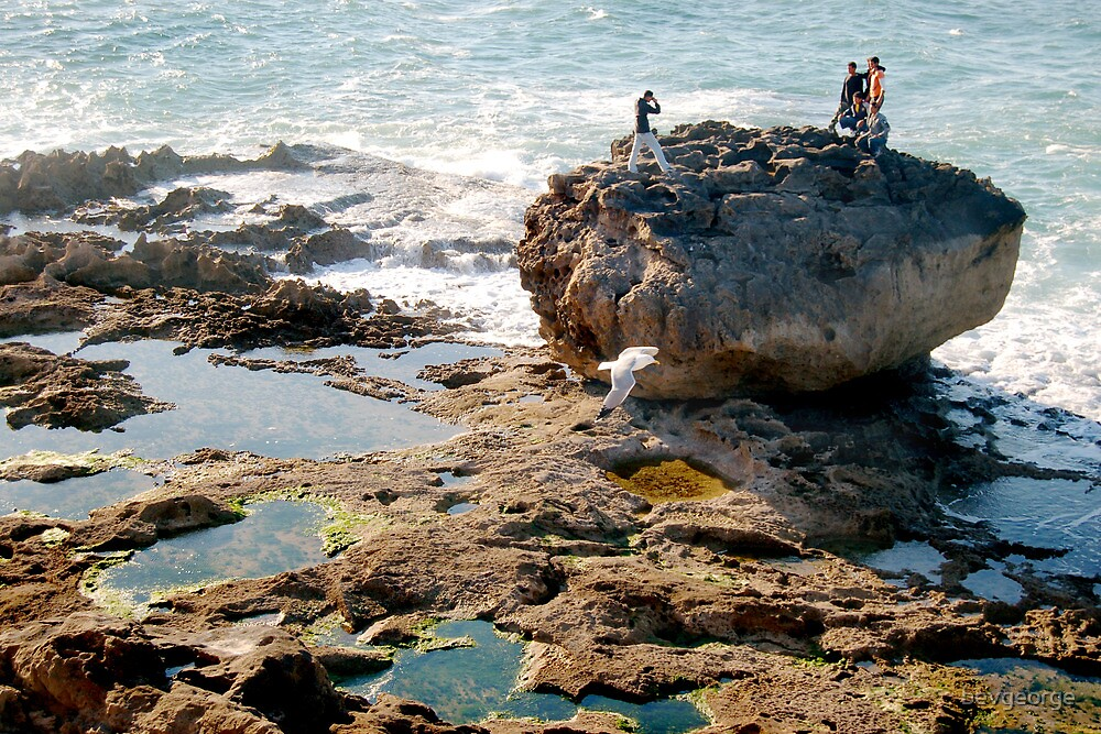 Essaouira, Morocco, Young Men on Rock by bevgeorge