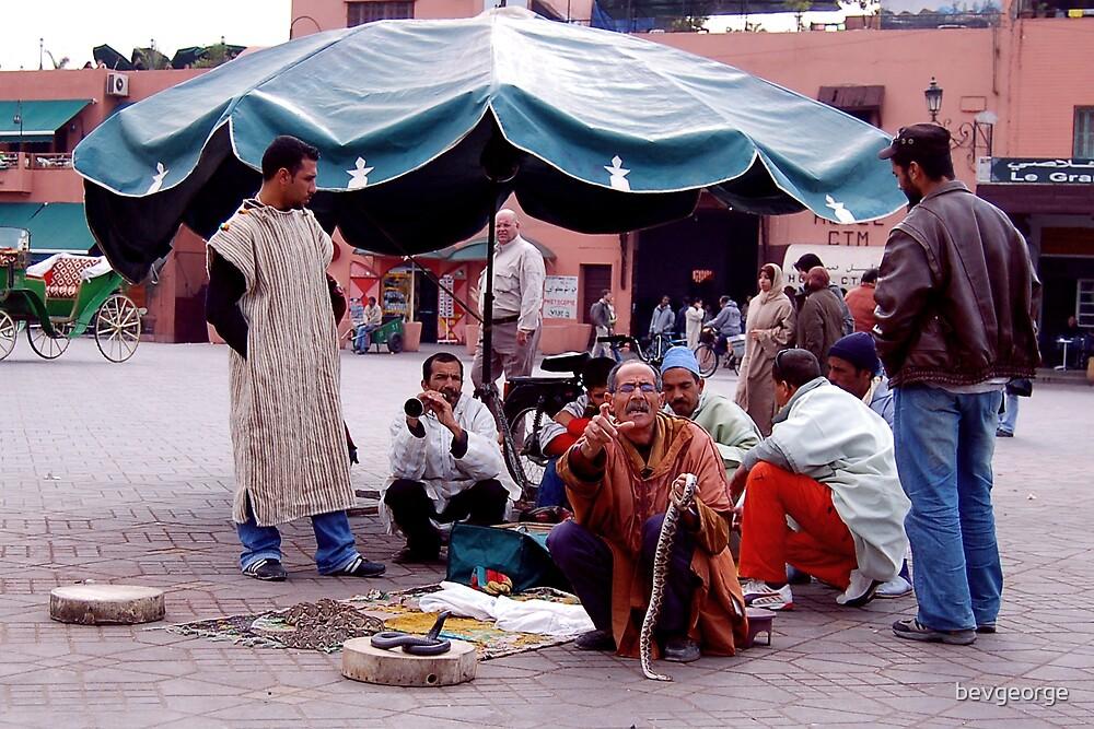 Snake Charmer in Souk, Marrakesh by bevgeorge