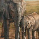 Elephant and Calf by Richard Macwee