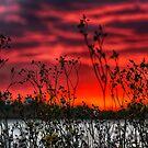 Twilight Hues by IanMcGregor