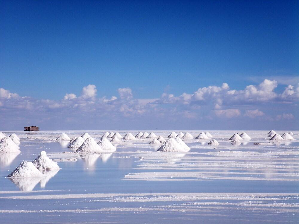 Collecting Salt by Vonnstar