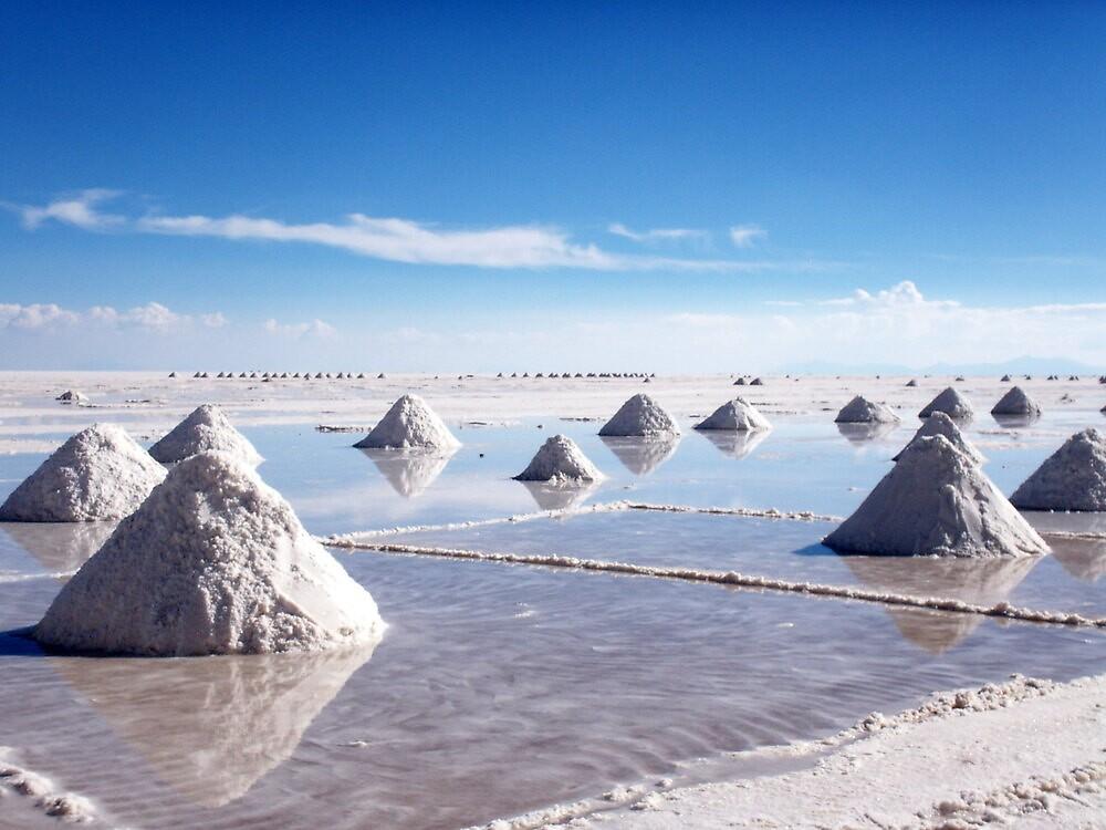 Collecting Salt 3 by Vonnstar