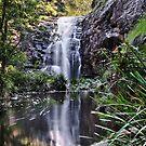 Sheoak Falls by John  Kowalski