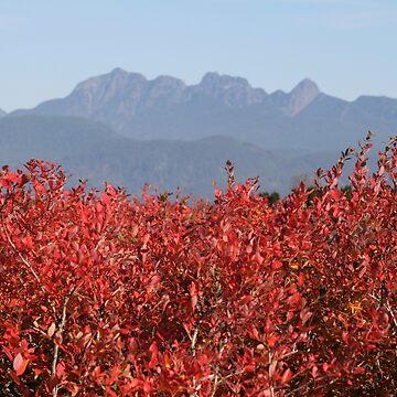 Autumn Blueberries by PrairieRose