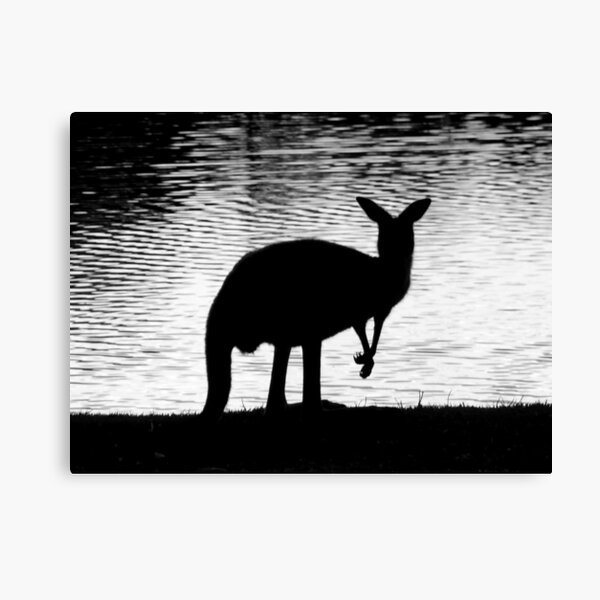 Little Roo'd Canvas Print