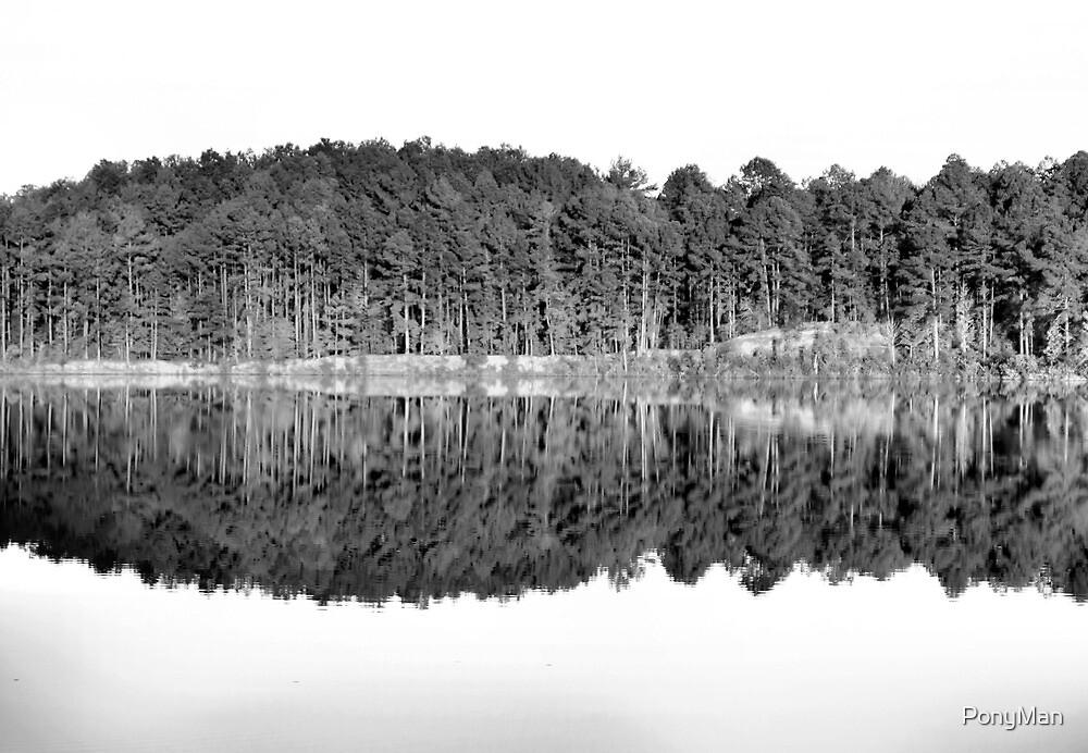 Lake Line by PonyMan