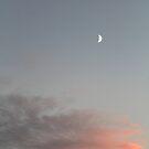 Irish Skies - Half moon by WesternExposure