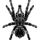 Pagan Animals - Black Tarantula Spider by Nishita Wojnar