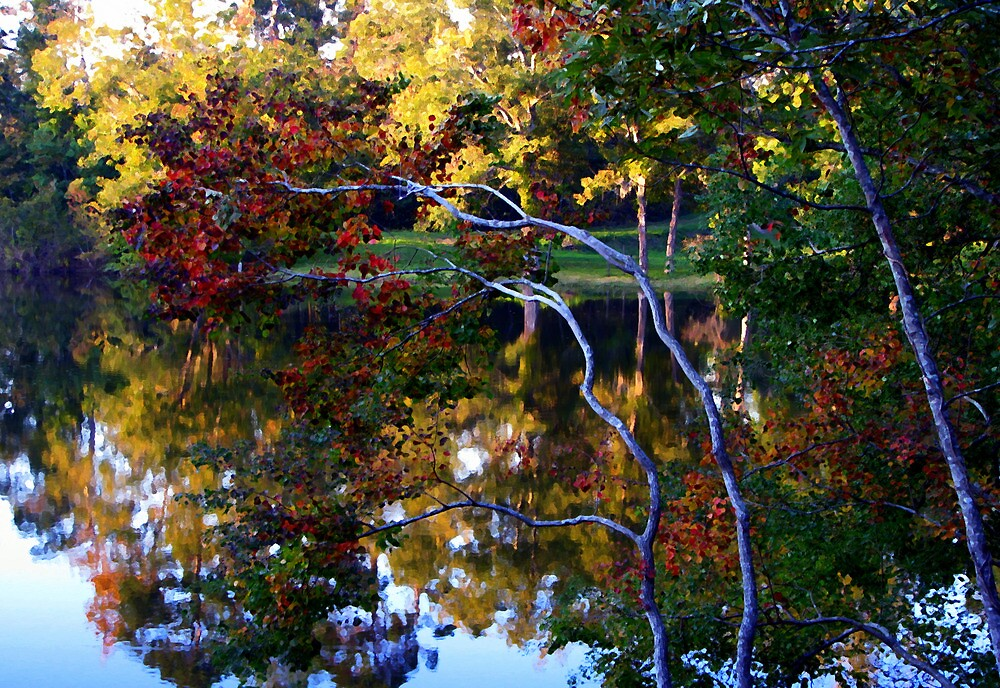 Fall Colors-Pretty As A Painting by DottieDees