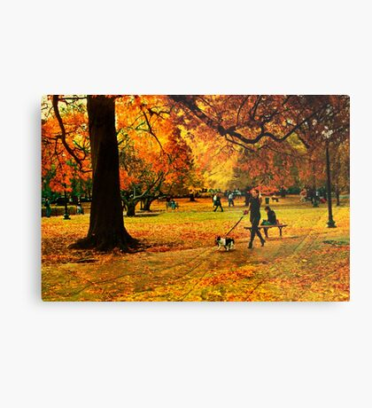 The lady with dog Metal Print