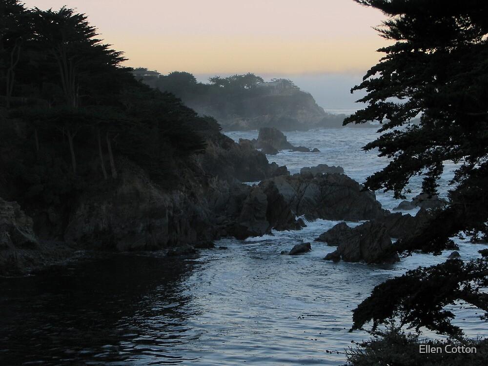View of Point Lobos by Ellen Cotton